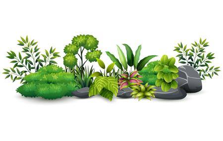 Little green plant botanical landscape 向量圖像
