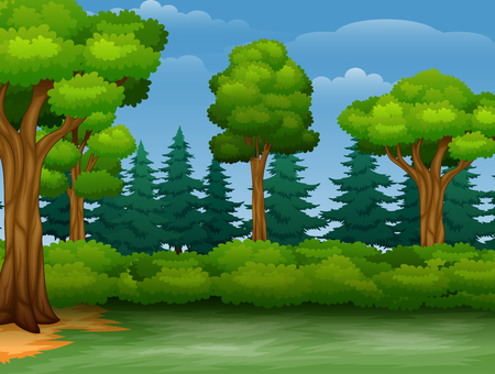 Cartoon of trees view in a forest