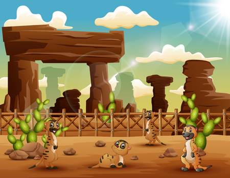 Cartoon Meerkats enjoying on the desert