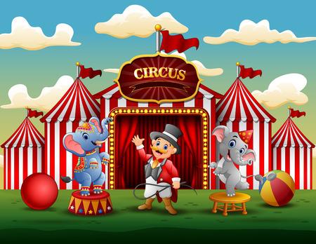 Spectacle de cirque avec dresseur et deux éléphants