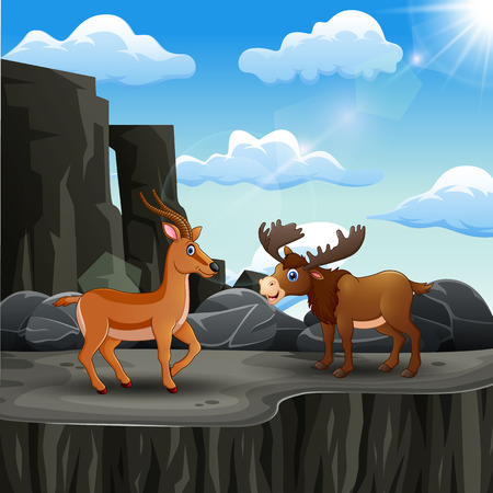 A moose and deer on the edge of a cliff