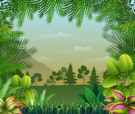 Tropical jungle background with trees and leaves