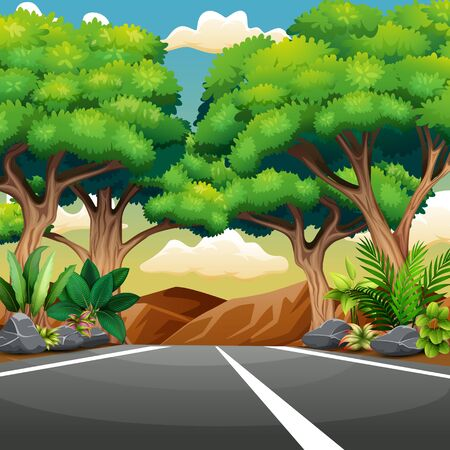 Straight paved road with forest landscape