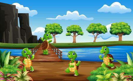Viele Schildkröten über die Holzbrücke