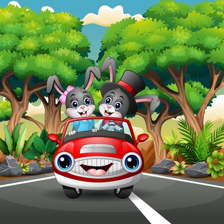 Couples rabbit cartoon driving a car through the forest Vector Illustratie