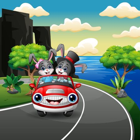 Couples rabbit cartoon driving a car in the seaside road