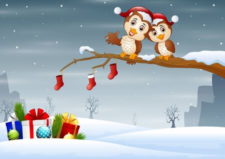 Owls couple in christmas hats on the tree branch