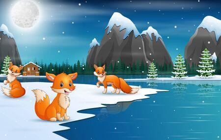 Cute winter foxes enjoying falling snow