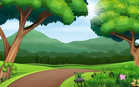 Nature background with path road and trees