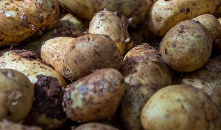 Delicious Irish potatoes.