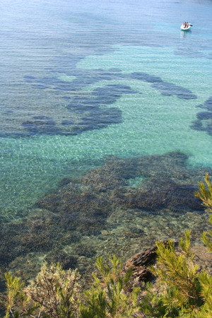 cros: beautiful clear water off island of port cros, france