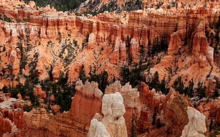 bryce: the amazing rock structures at bryce canyon, utah, usa