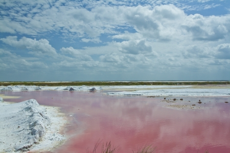 stunning shallow sea made pink in colour from the surrounding salt flats, ria largartos, mexico 스톡 콘텐츠