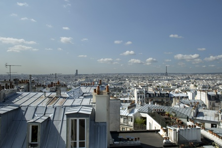 panoramic roof: paris skyline with the eiffel tower in the background
