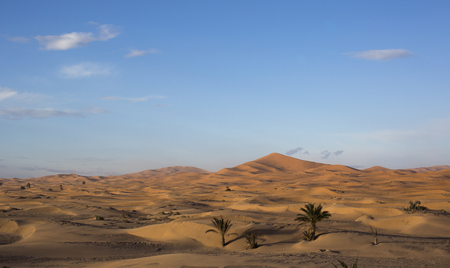 erg: the erg chebbi sand dunes in merzouga, morocco