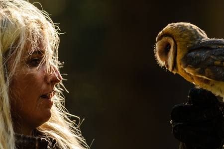 falconry: Closeup detail of blond falconry girl gaze to barn owl standing on her hand