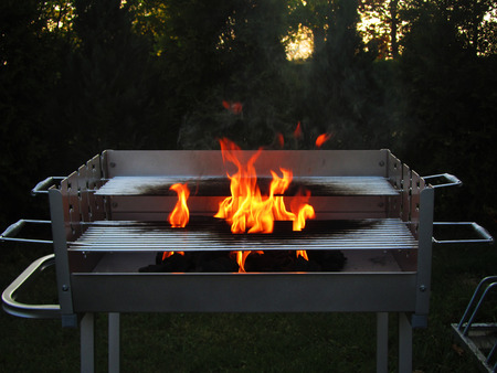 grille: Fire of wood coal bellow steel grille Stock Photo
