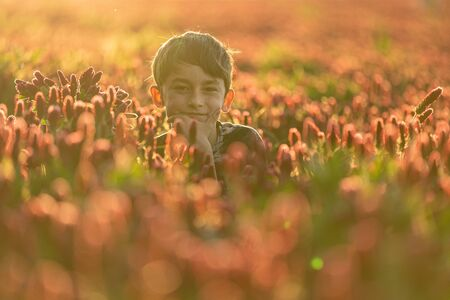 Thinking boy with a bouquet in a clover field. Backlight in golden hour. One boy