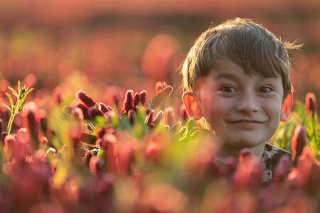 Happy boy looking above flowers in th eclover field. Optimistic scene. Banque d'images