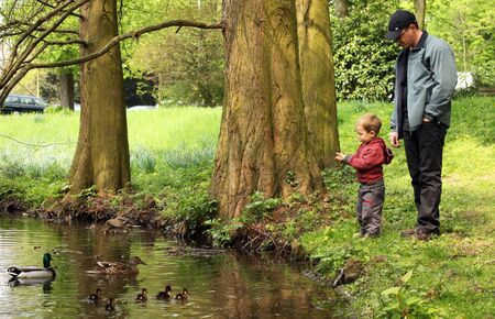 Father and son looking at the ducks in the city pond photo