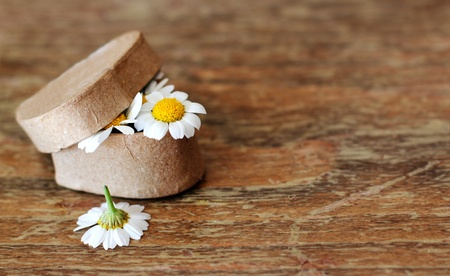 Spring daisies in a box for a gift  Soft Focus Stock Photo - 12973319