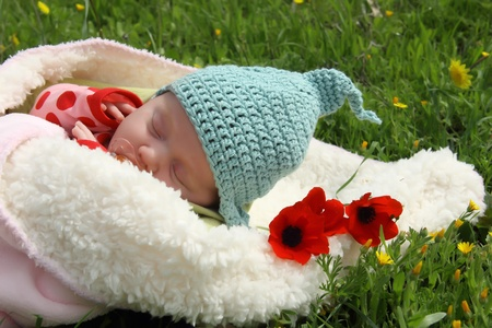 month-old girl lying on white blanket next to the red poppies  photo