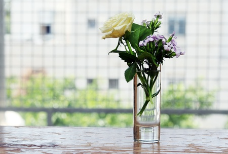 glass with flowers   photo