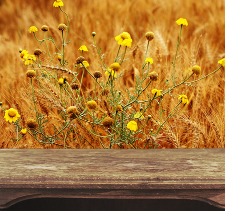 Vintage wooden table with natural background photo