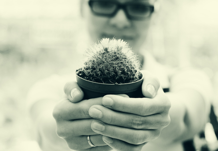 replanting: woman with cactus