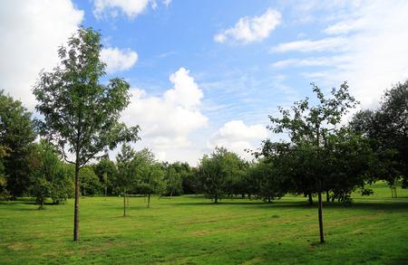 citypark: city-park