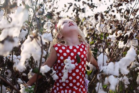 5 years: 5 years old girl standing in cotton field