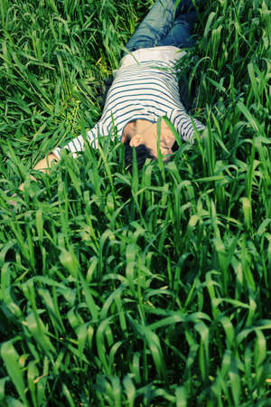 middle easter: Young beautiful woman lying on green grass