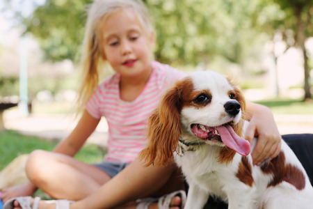 7 year old girl is walking with a puppy in the park 写真素材