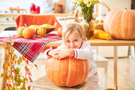 A little blonde girl sits on a wooden floor in a white kitchen next to a large orange autumn pumpkin Imagens