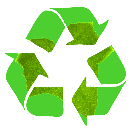 Recycle sign made with green leaf on white background Stock Photo - 22663819