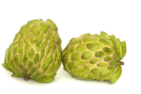 custard apples: Two custard apples leaning on each other on white background