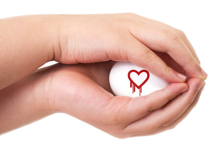 Heartbleed exploit concept with two hands handling an egg photo