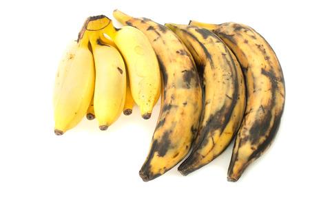 Three plantain bananas versus regular on white background Stock Photo