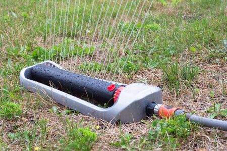 spaying: Lawn sprinkler spaying water over dying grass Stock Photo