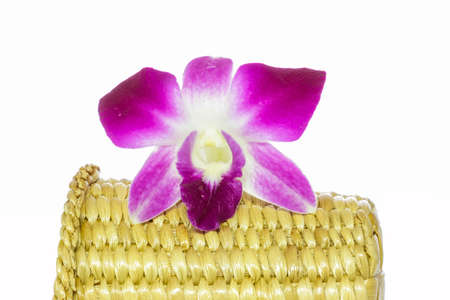 water hyacinth: violet orchid flower on water hyacinth