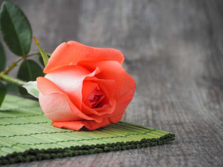 orange rose: orange rose on wood background (valentine concept) Stock Photo