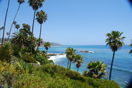 beach landscape: Laguna Beach landscape, California, USA