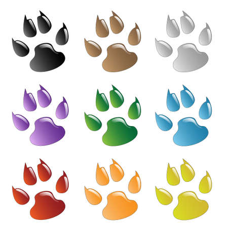 dog paws: Paw Prints