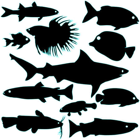 Silhouette of fish Stock Vector - 9901594
