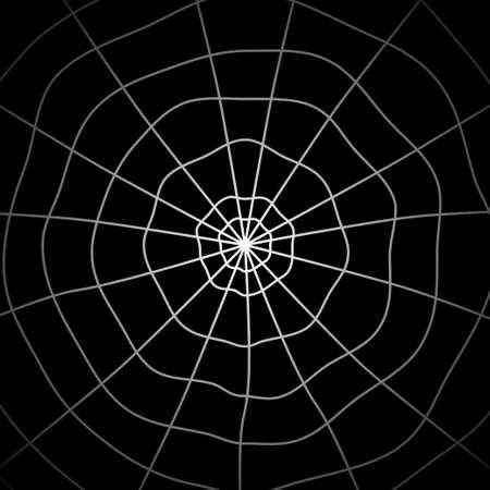 Spider web Illusztráció