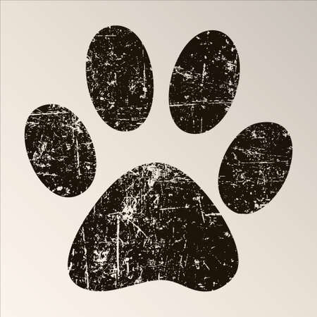 dog ear: Paw Print Stock Photo