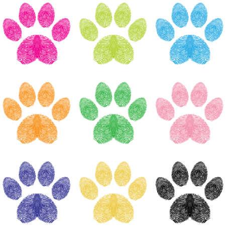 tigre cachorro: Impresiones de la pata