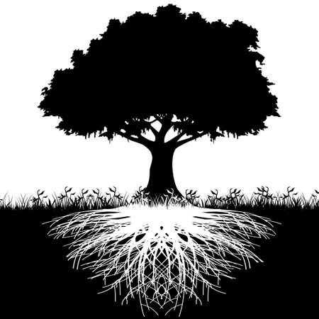 Las raíces del árbol silueta Ilustración de vector