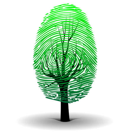 Fingerprint tree Vector