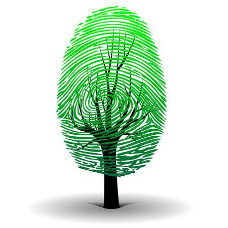 Huella árbol